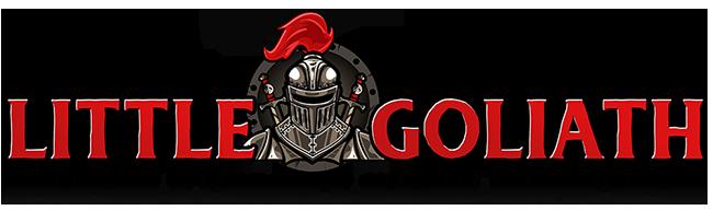 Little Goliath Website Hosting